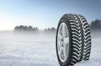 Фото: Зимние шины